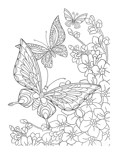 Butterfly Coloring Pages Detailed Near Flowers for Adults