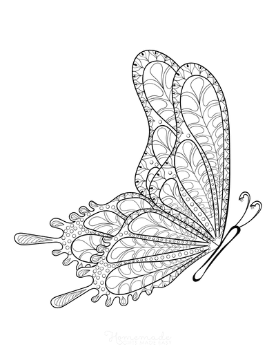 Butterfly Coloring Pages Detailed Pattern Flying Side View Adults