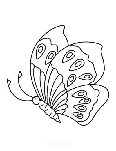 Butterfly Coloring Pages Eye Spots Side View