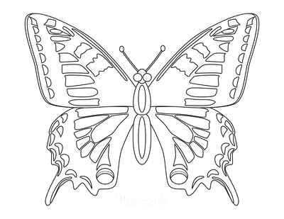 Butterfly Coloring Pages Hole Wing