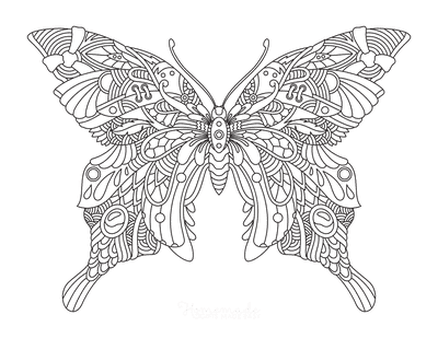 Butterfly Coloring Pages Intricate Pattern for Adults