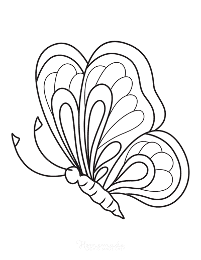 Butterfly Coloring Pages Layers Side View