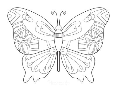 Butterfly Coloring Pages Patterned Wings Spread