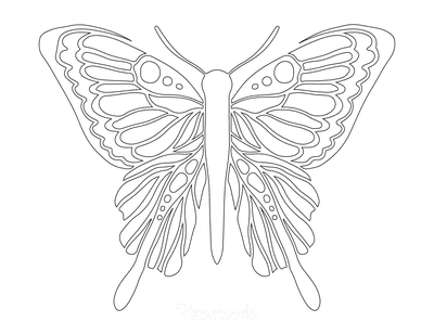 Butterfly Coloring Pages Sections to Color