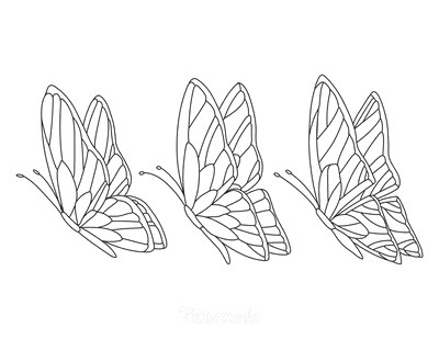 Butterfly Coloring Pages Set 3