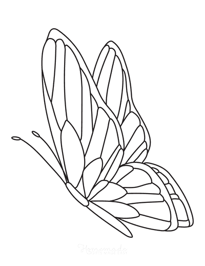 Butterfly Coloring Pages Side Patterned