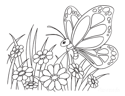Butterfly Coloring Pages Simple Flowers Preschoolers