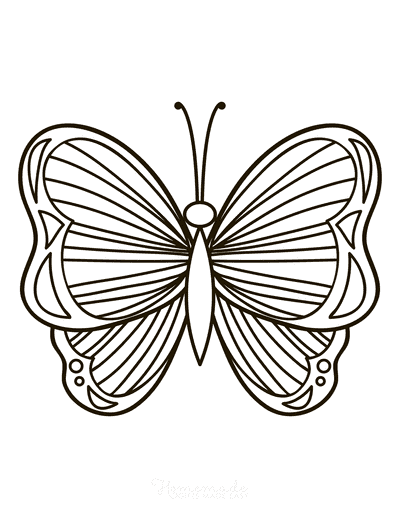 Butterfly Coloring Pages Simple Pattern to Color Stripes