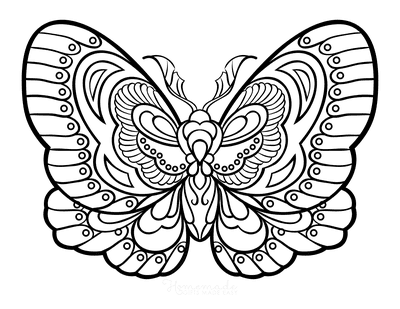Butterfly Coloring Pages Stylized Intricate Patterned Wings