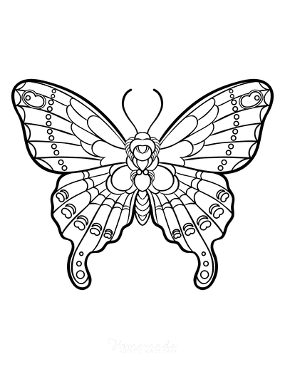 Butterfly Coloring Pages Sylized Intricate Design