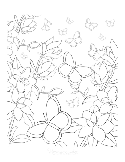 Butterfly Coloring Pages Wild Flowers Butterflies