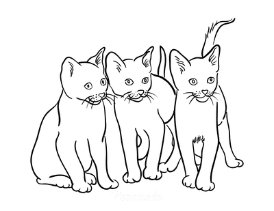 Cat Coloring Pages 3 Cats Outline