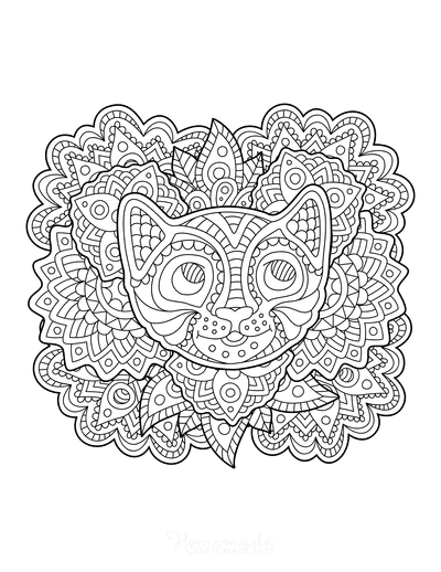 Cat Coloring Pages Cat Face Patterned for Adults