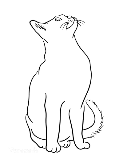 Cat Coloring Pages Cat Outline Looking up