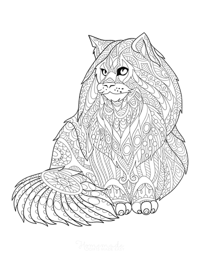 Cat Coloring Pages Cat With Intricate Pattern to Color