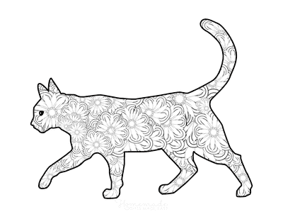 Cat Coloring Pages Flower Pattern for Adults