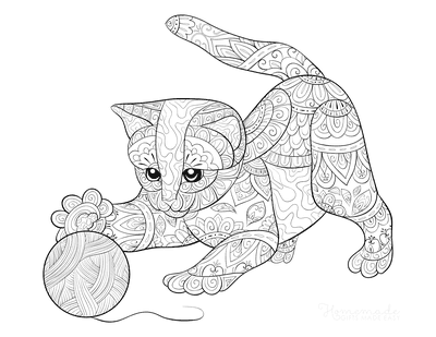 Cat Coloring Pages Kitten Wool for Adults