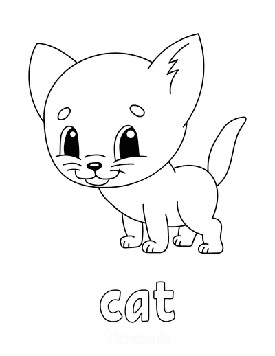 Cat Coloring Pages Preschool C a T