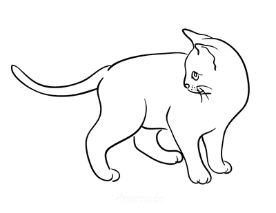 Cat Coloring Pages Simple Cat Outline