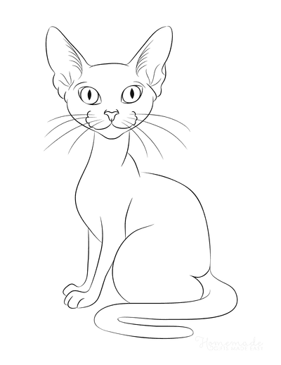 Cat Coloring Pages Sphynx Cat Outline