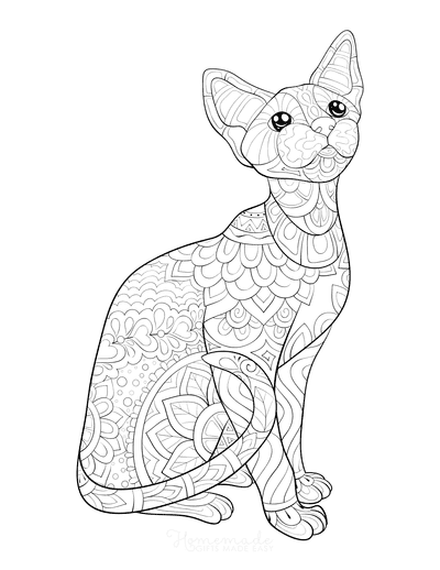 Cat Coloring Pages Sphynx With Intricate Pattern Adults