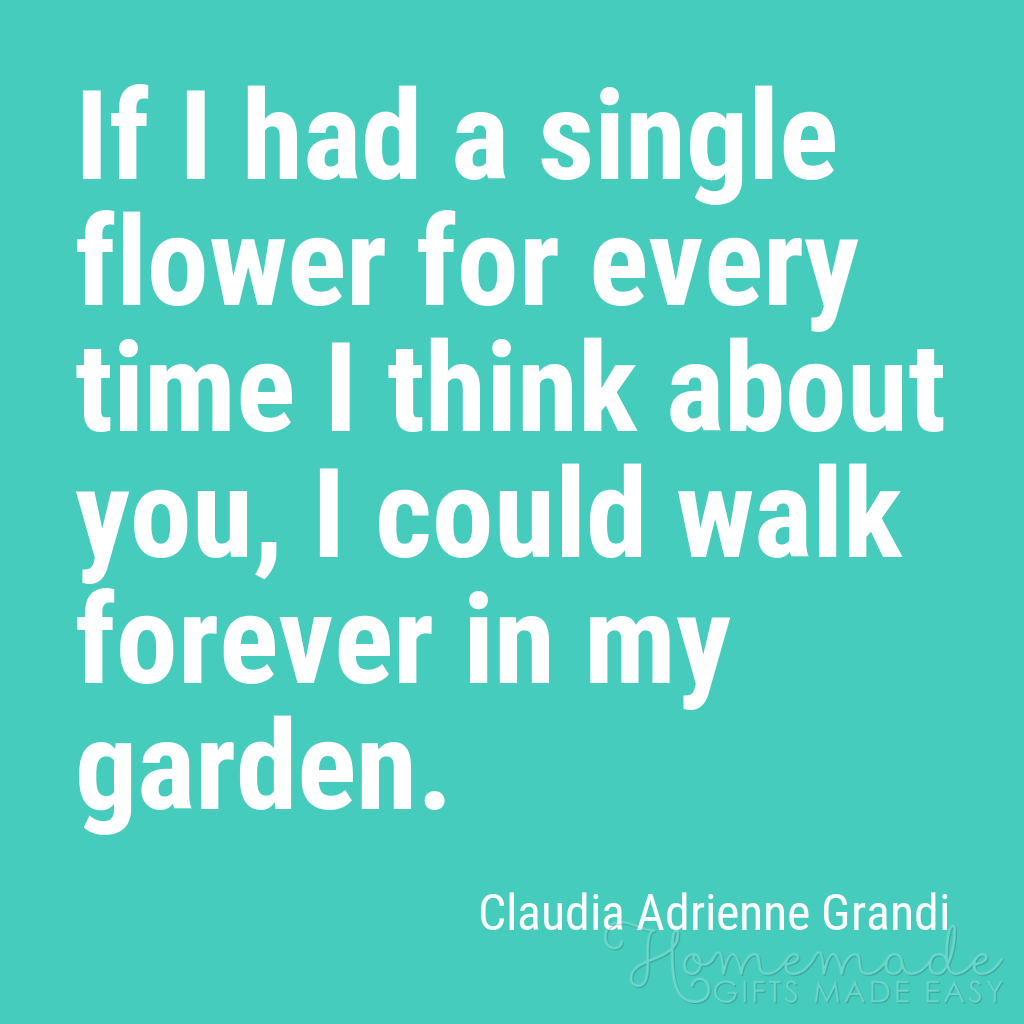 cute boyfriend quotes a flower for every time think about you