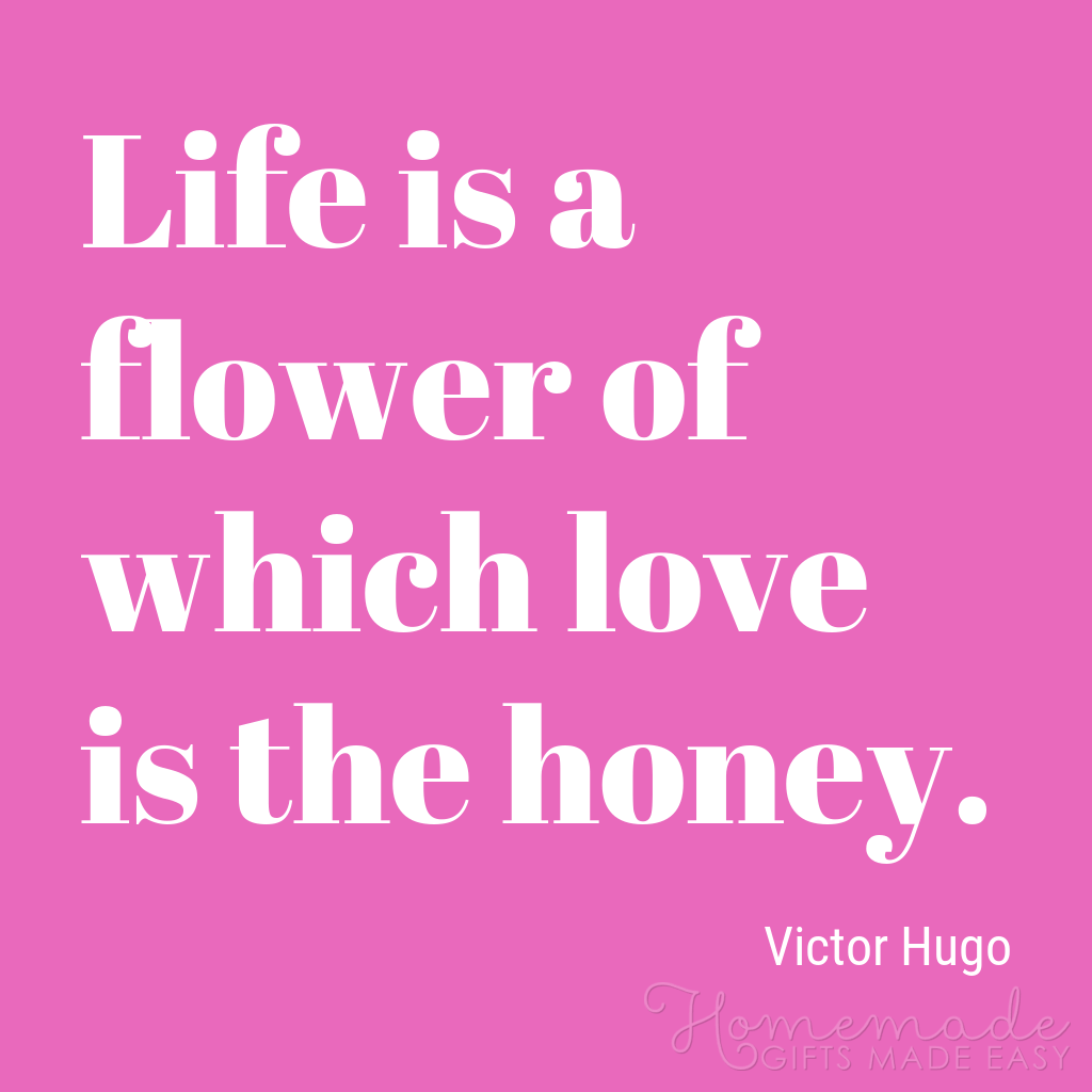 cute boyfriend quotes love is the honey