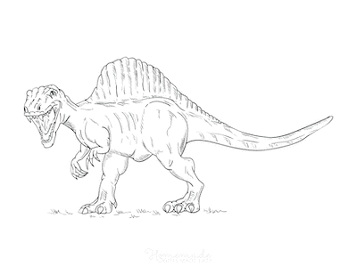 Dinosaur Coloring Pages Fierce Spinosaurus Attack