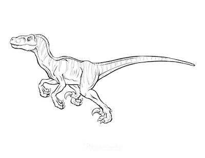 Dinosaur Coloring Pages Running Dinosaur