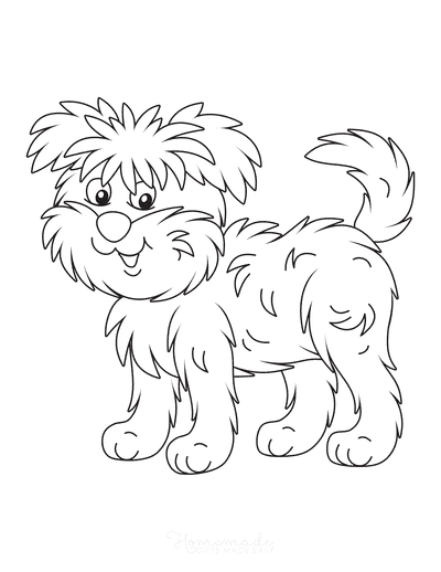 Dog Coloring Pages Affenpinscher Monkey Terrier Cute Cartoon