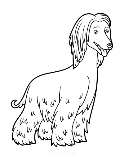 Dog Coloring Pages Afghan Hound Outline