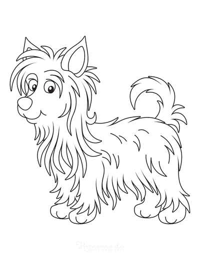 Dog Coloring Pages Australian Silky Terrier Cute Cartoon