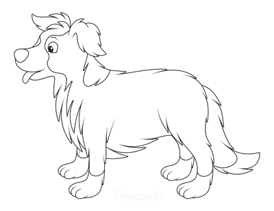 Dog Coloring Pages Border Collie Outline