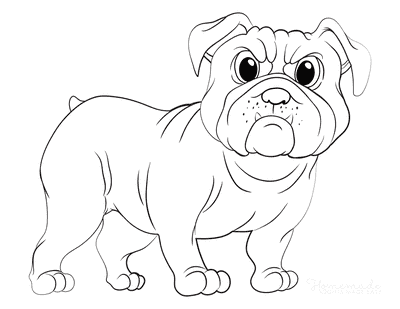 Dog Coloring Pages Bulldog Outline
