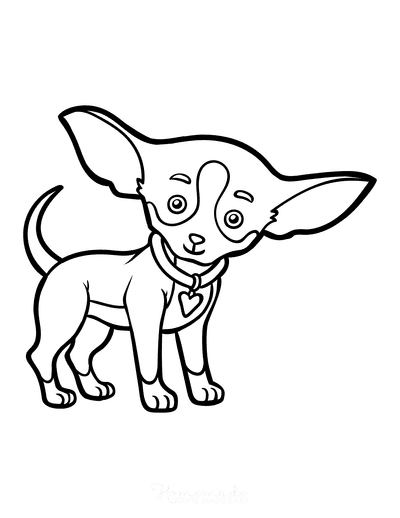 Dog Coloring Pages Chihuahua Outline
