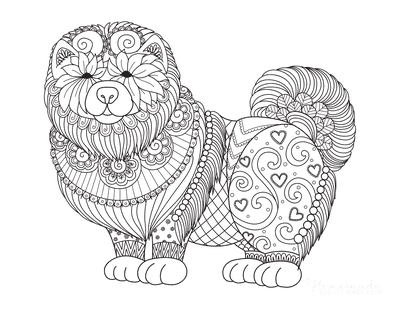 Dog Coloring Pages Chow Chow Intricate Pattern for Adults