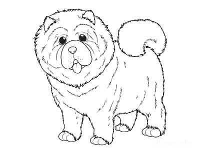 Dog Coloring Pages Chow Chow Outline