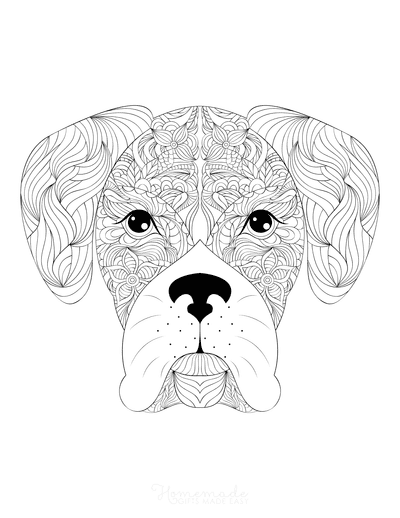 Dog Coloring Pages Cute Boxer Head for Adults