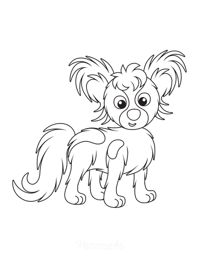 Dog Coloring Pages Cute Papillon Toy Spaniel Cartoon