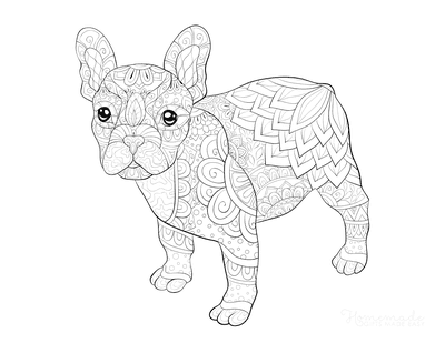 Dog Coloring Pages Cute Pit Bull Patterned for Adults