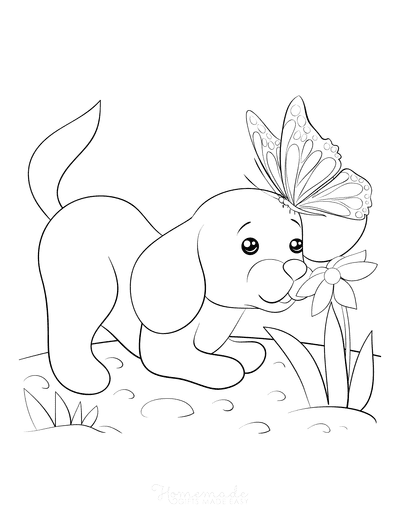 Dog Coloring Pages Cute Puppy Flower Butterfly