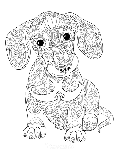 Dog Coloring Pages Dachshund Patterned Adult Coloring