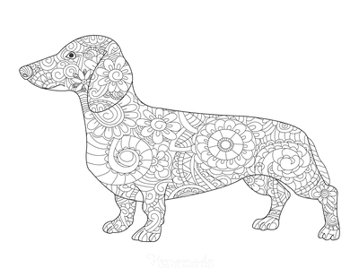 Dog Coloring Pages Dachshund Patterned for Adults