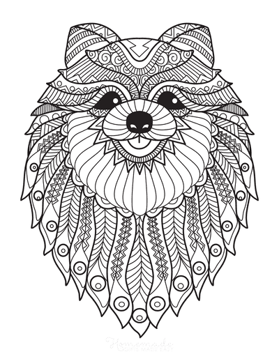 Dog Coloring Pages Detailed Pattern Pomeranian for Adults