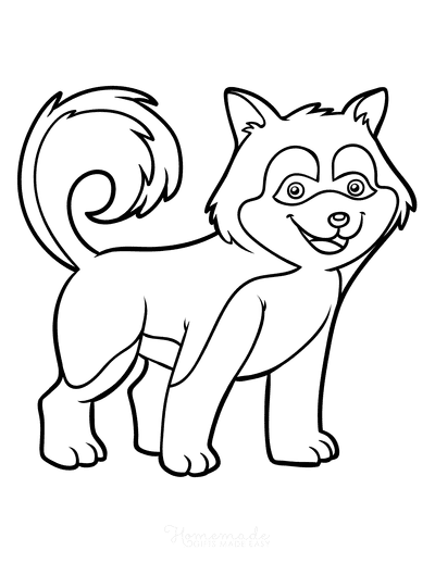 Dog Coloring Pages Husky Outline