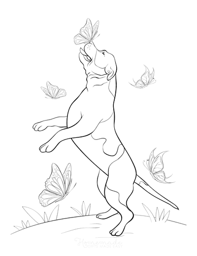 Dog Coloring Pages Playing With Butterflies