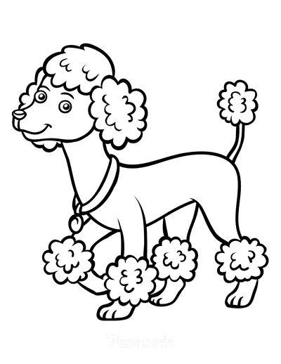 Dog Coloring Pages Poodle Outline