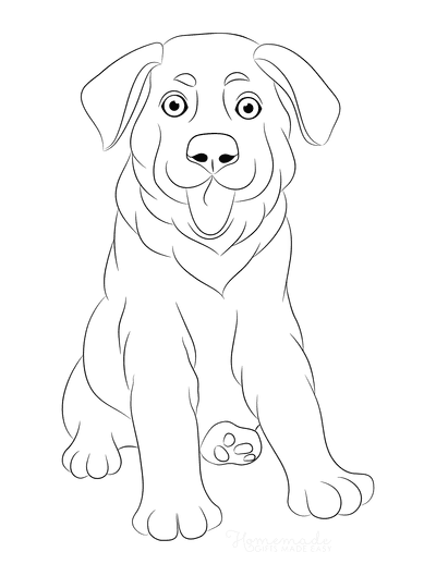 Dog Coloring Pages Puppy Dog Sitting Ears Down