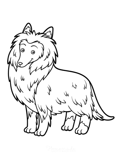 Dog Coloring Pages Rough Collie Outline