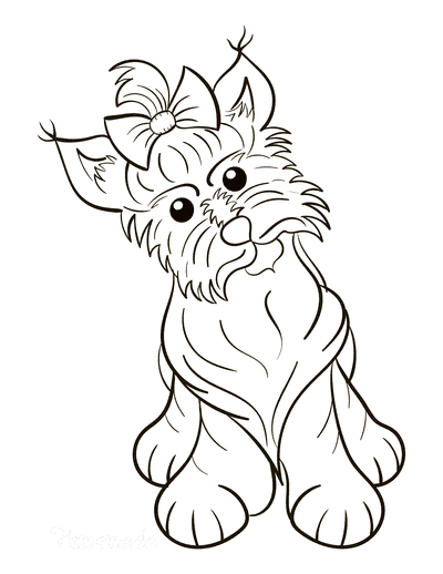 Dog Coloring Pages Yorkshire Terrier Cute With Bow